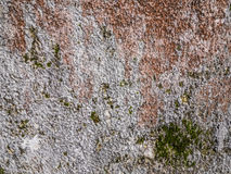 Rough wall texture Royalty Free Stock Photography