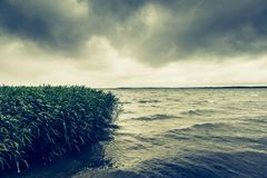Rough waves on a lake Stock Photography