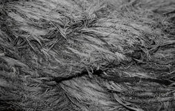 Rough weathered anchor rope macro background. Close up highly textured photograph of a worn and weathered 6 inch marine anchor rope in monochrome Royalty Free Stock Photos