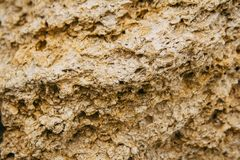 Rough weathered porous sandstone surface texture close up royalty free stock photography