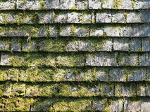 Rough weathered timber roof shingles overgrown with moss Stock Images