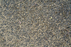 Rough wet sand texture Stock Image
