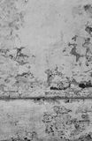 Rough white wall plaster. Stock Photography