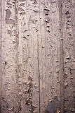 Rough, wood, cracked textured background Royalty Free Stock Images
