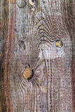 Rough wooden plank visible discoloration knots Stock Images