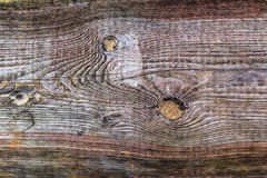 Rough wooden plank visible discoloration knots Royalty Free Stock Photos