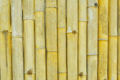 Rough yellow bamboo wall Stock Images