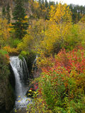 Roughlock Falls - Black Hills of South Dakota Stock Photography