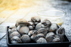 A roughly cockle with seafood dipping sauce flavoursome. Roughly cockle with seafood dipping sauce flavoursome Stock Photos