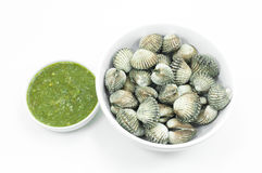 Roughly cockle with seafood dipping sauce flavoursome on white. Background Stock Photography