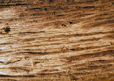 Roughly sanded wooden surface Royalty Free Stock Image