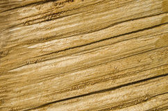 Roughly treated lacquered oak plank closeup Royalty Free Stock Image