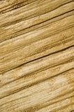 Roughly treated lacquered oak plank closeup Royalty Free Stock Photo