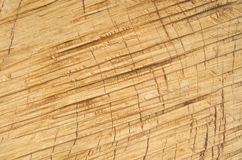 Roughly treated lacquered oak plank closeup Royalty Free Stock Photography