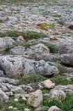 Roughy岩石地形在Sagres,葡萄牙 免版税库存照片