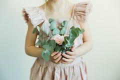 Rougissent les fleurs de l'oeillet dans un arc Photo libre de droits