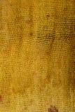 Rouille colorée en soie Photos stock