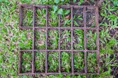 Rouille sur l'herbe Photo libre de droits