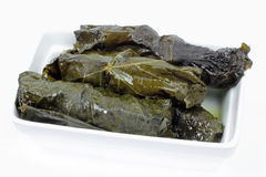 Roulades with grapevine leaf and rice Stock Photos