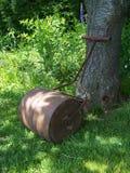Rouleau de pelouse Photos libres de droits