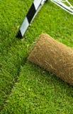 Roulis d'herbe de gazon sur la zone de sport - plan rapproché Photos stock