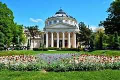 Roumain Atheneu à Bucarest photo libre de droits