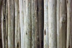Round światło barwiący drewniani kije tworzy rozdział lub ścianę obrazy stock