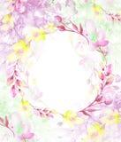 Round akwareli rama, poczt?wka, wianek kwiaty, ga??zki, ro?liny, jagody ptaka rocznik ?liczny ilustracyjny ustalony U?ywa w r??ny royalty ilustracja