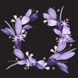 Round akwareli rama wiosna kwitnie na czarnym tle ilustracja wektor