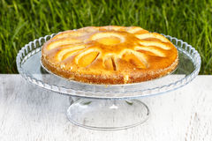Round apricot cake on cake stand Royalty Free Stock Photos