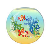 Round aquarium with fishes. In a vector Royalty Free Stock Photography