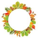 Round autumn banner Royalty Free Stock Photo