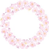 Round backround with apple blossom Stock Image