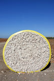 Round bale of cotton Stock Photography