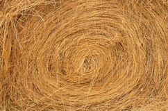 Round Bale Detail. Stack of round bales of grass hay used for winter cattle feed Stock Photos