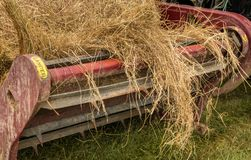 Round Bale Feede. Round bale of hay getting feed out on a bale feeder Stock Image