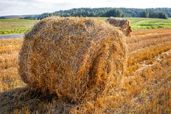 Round bale hay Stock Images