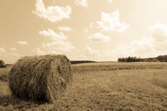 Round bale (hay) on sky background - aged photo Stock Photography