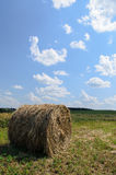 Round bale (hay) on sky background Stock Photography