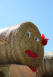 Round bale of hay royalty free stock photos
