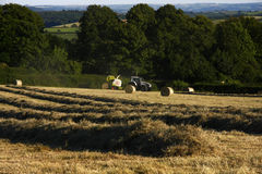 Round Bale Silage Field. Class tractor and round baler, baling the rows of grass in to feed for cattle in the winter time, this is fed indoors in a barn stock images