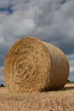 Round Bale of Straw Stock Photos