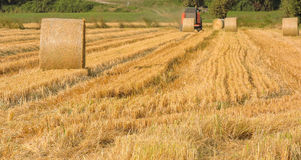 Round baler. Working round baler on the field stock photography