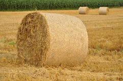 Round Bales Stock Photos