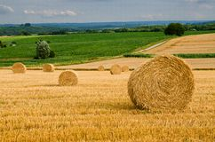 Free Round Bales Royalty Free Stock Photography - 33259337