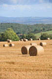 Round Bales Royalty Free Stock Images