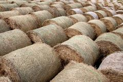 Round bales background. Round bales of straw on a field royalty free stock photography
