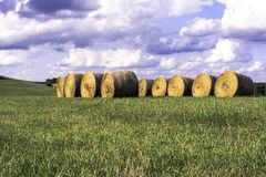 Round Bales in a field on a hilltop Royalty Free Stock Images