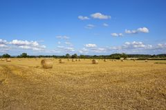 Round bales at harvest time Stock Photo