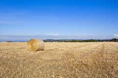 Round bales at harvest time Royalty Free Stock Image